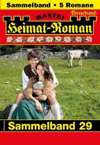 Cover Heimat-Roman Treueband 29