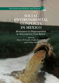 Cover Social Environmental Conflicts in Mexico