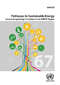 Cover Pathways to Sustainable Energy