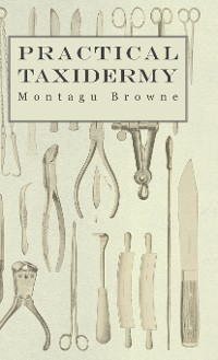 Cover Practical Taxidermy - A Manual of Instruction to the Amateur in Collecting, Preserving, and Setting up Natural History Specimens of All Kinds. To Which is Added a Chapter Upon the Pictorial Arrangement of Museums