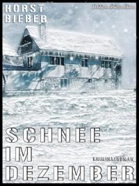 Cover Schnee im Dezember