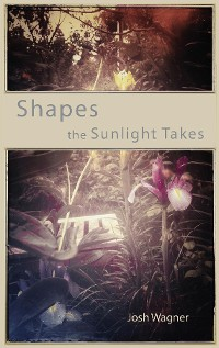 Cover Shapes the Sunlight Takes