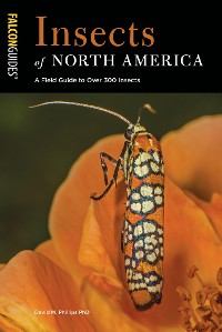 Cover Insects of North America