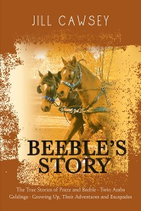 Cover Beeble's Story