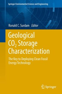 Cover Geological CO2 Storage Characterization