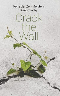 Cover Crack the Wall