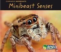 Cover Minibeast Senses