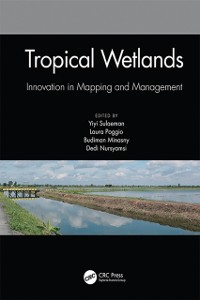 Cover Tropical Wetlands - Innovation in Mapping and Management