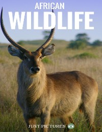 Cover African Wildlife