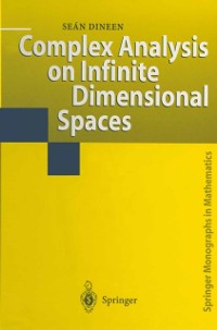 Cover Complex Analysis on Infinite Dimensional Spaces