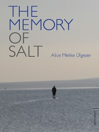 Cover The Memory of Salt