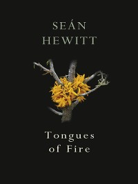 Cover Tongues of Fire
