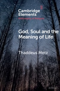 Cover God, Soul and the Meaning of Life