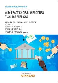 Cover Guía Práctica de Subvenciones y Ayudas Públicas