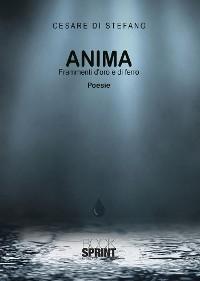 Cover Anima - Frammenti d'oro e di ferro