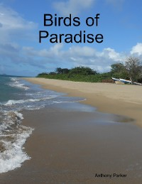 Cover Birds of Paradise