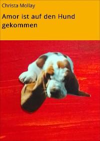 Cover Amor ist auf den Hund gekommen