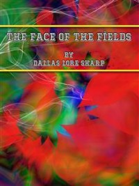 Cover The Face of the Fields