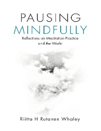 Cover Pausing Mindfully: Reflections On Meditation Practice and the World