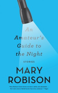Cover An Amateur's Guide to the Night