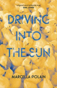 Cover Driving into the Sun