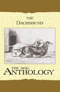 Cover Daschund - A Dog Anthology (A Vintage Dog Books Breed Classic)