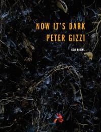 Cover Now It's Dark