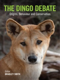 Cover The Dingo Debate