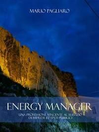 Cover Energy manager: Una professione vincente al servizio di imprese ed enti pubblici