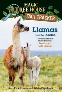 Cover Llamas and the Andes