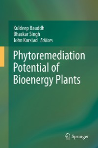 Cover Phytoremediation Potential of Bioenergy Plants