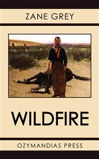 Cover Wildfire
