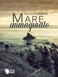 Cover Mare Immaginato