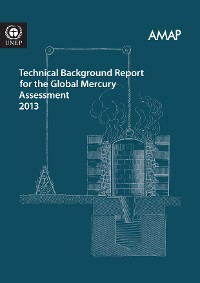 Cover Technical Background Report for the Global Mercury Assessment 2013