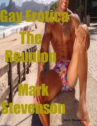 Cover Gay Erotica the Reunion