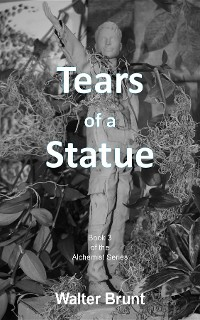 Cover Tears of a Statue