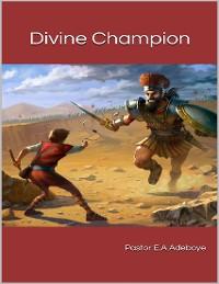 Cover Divine Champion