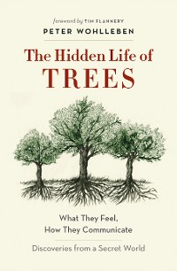 Cover The Hidden Life of Trees