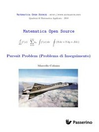 Cover Pursuit Problem (Problema di Inseguimento)