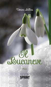 Cover Il Bucaneve