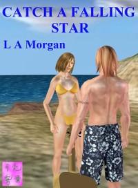 Cover Catch A Falling Star