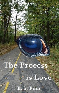 Cover The Process is Love