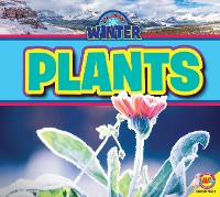 Cover Plants