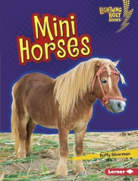 Cover Mini Horses