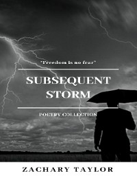 Cover Subsequent Storm