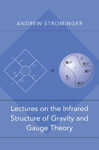 Cover Lectures on the Infrared Structure of Gravity and Gauge Theory