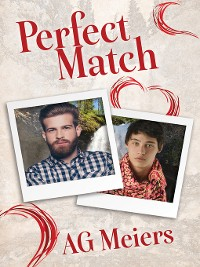 Cover Perfect Match