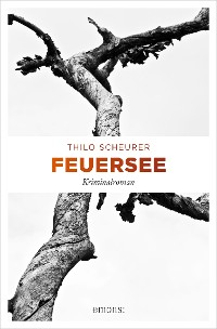Cover Feuersee