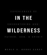 Cover In the Wilderness: Experiences of Encountering God