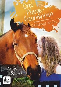 Cover Drei Pferdefreundinnen - Diebesjagd am Set
